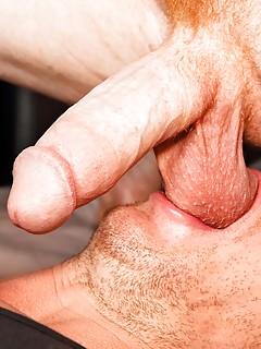 Gay Ball Licking Pics