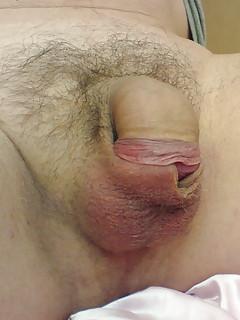 Small Gay Cock Pics